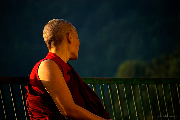 A moment of tranquility of a buddhist nun in Mcleod Ganj, Dharamsala