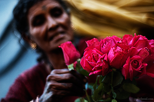 A rose seller with a bunch of red roses from Dadar flower market, Mumbai, India