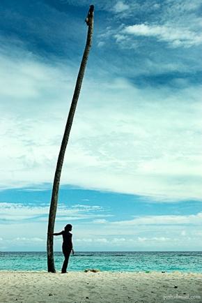 A girl standing near a coconut tree in Villingili island in Maldives