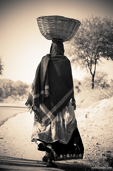 A rajasthani woman walking with a basket on her head