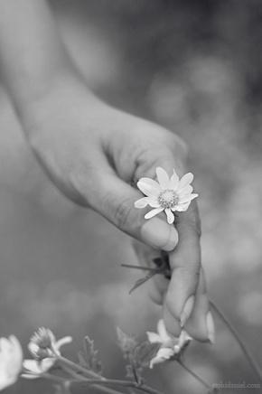 Girl holding a flower