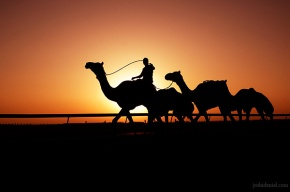 Silhouette of a camel handler riding into the sunset at the Al Marmoum Camel Race Track in Dubai