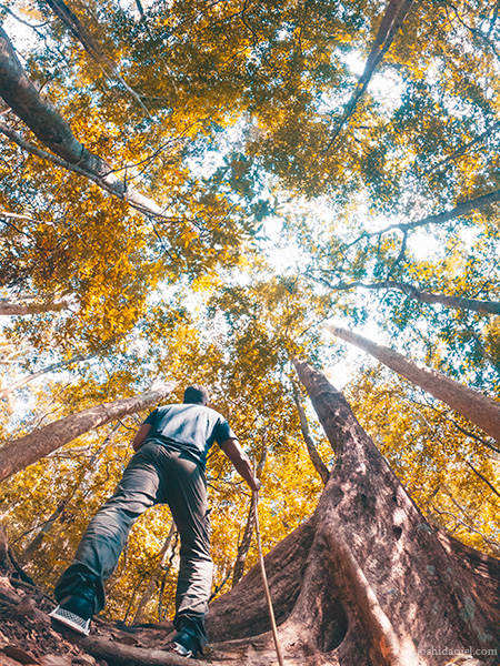 A GoPro Self-portrait of joshi daniel taken during the trek to the Agasthyarkoodam (Agastya Mala) in the Western Ghats of South India