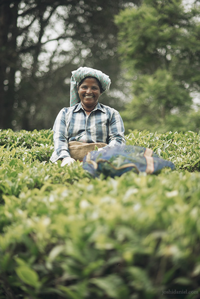 A smiling tea estate worker from Top Station, Munnar, Kerala, India
