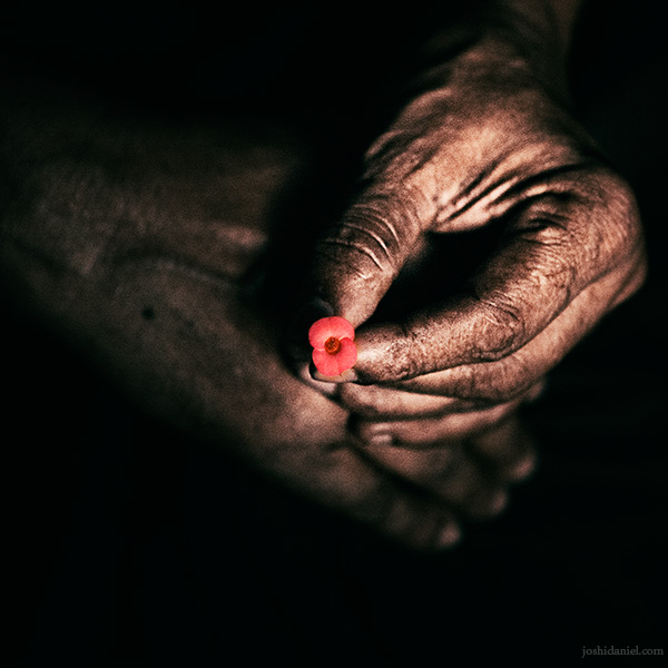 Holding a small red flower